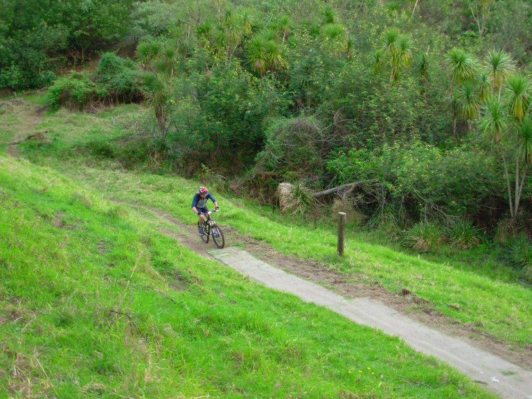Mountain Biker at the Woodhill Forest tracks