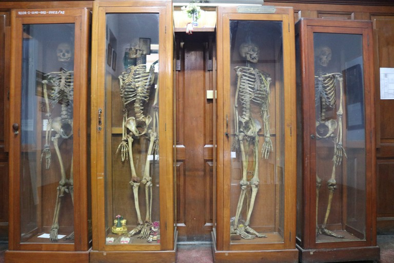 Outside the Congdon Anatomical Museum
