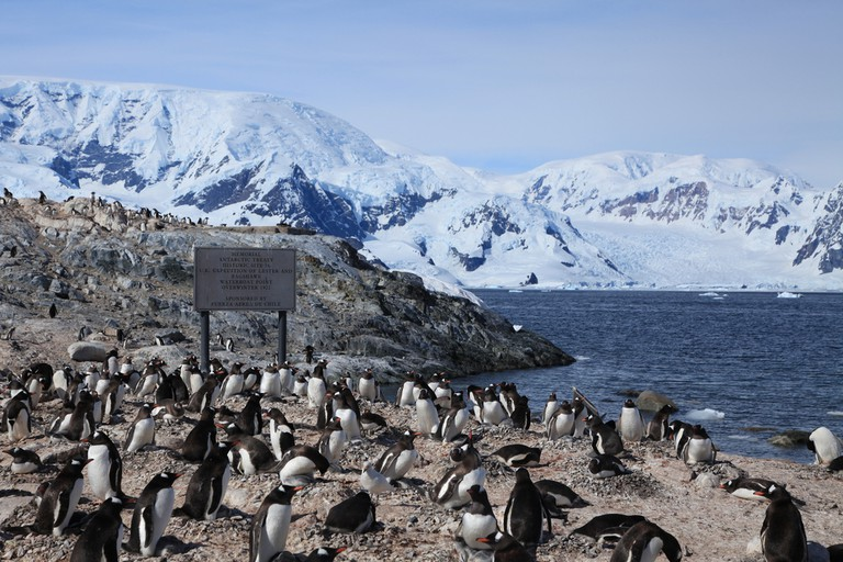 Waterboat Point, Antarctica