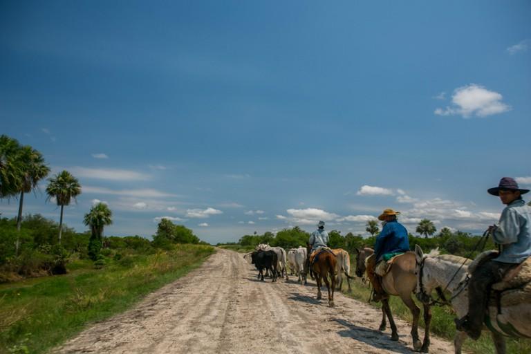 Horseback riding in Paraguay