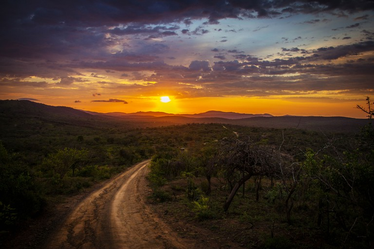 Sunset at the game reserve