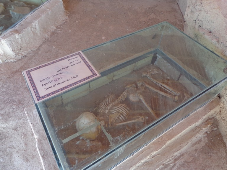 Skeleton of 10-year-old girl   © Pontia Fallahi