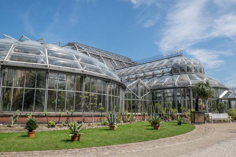 Amazing glass greenhouses