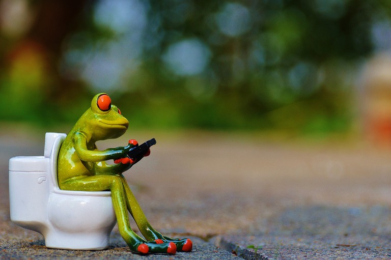 Just A Frog Sitting On The Toilet | © Pixabay