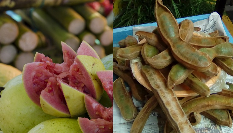 Guayaba (left) and guava. But the one of the left is used to make guava jam; © Metamorfa Studio/Flickr