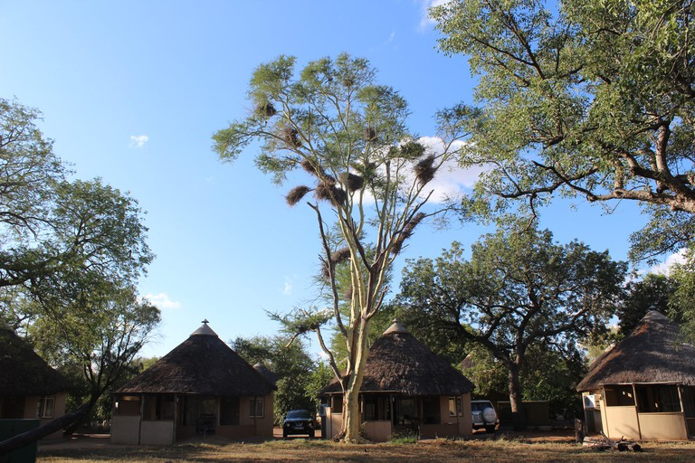 Satara rest camp, also referred to as the 'cat camp'