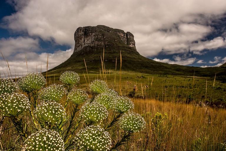Morrão - Parque Nacional da Chapada Diamantina | © Jeilsonandrade / Wikimedia Commons