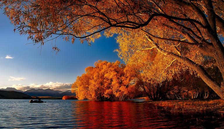 Lake Tekapo in Autumn