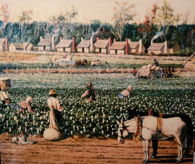 Slaves picking cotton in the Charleston area