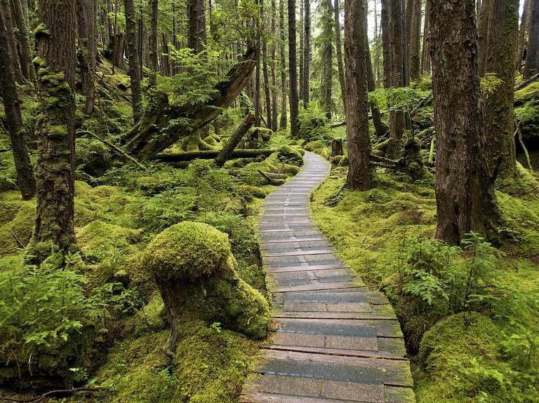 SG̱ang Gwaay Llanagaay on Haida Gwaii