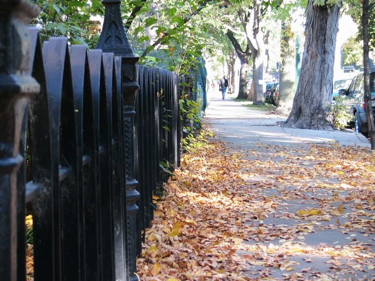 Fall in Lincoln Park | © Matt Bigelow/Flickr