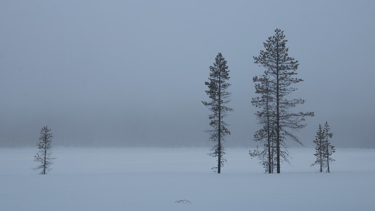 Finland during winter, the inspiration for Moominland Midwinter/ Markus Trienke/ Flickr
