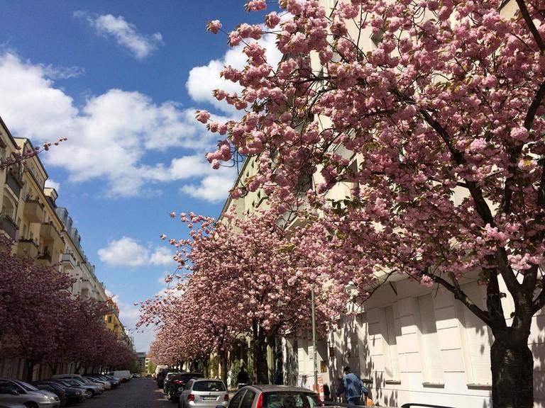 Spring in Friedrichshain