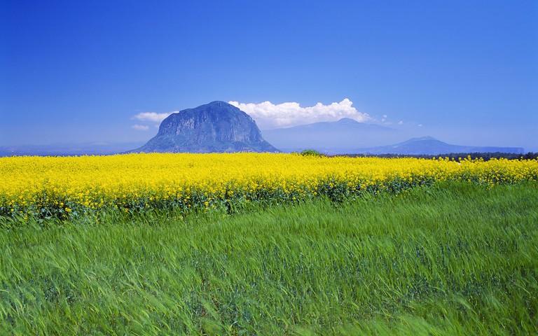 Sanbang Mountain in spring