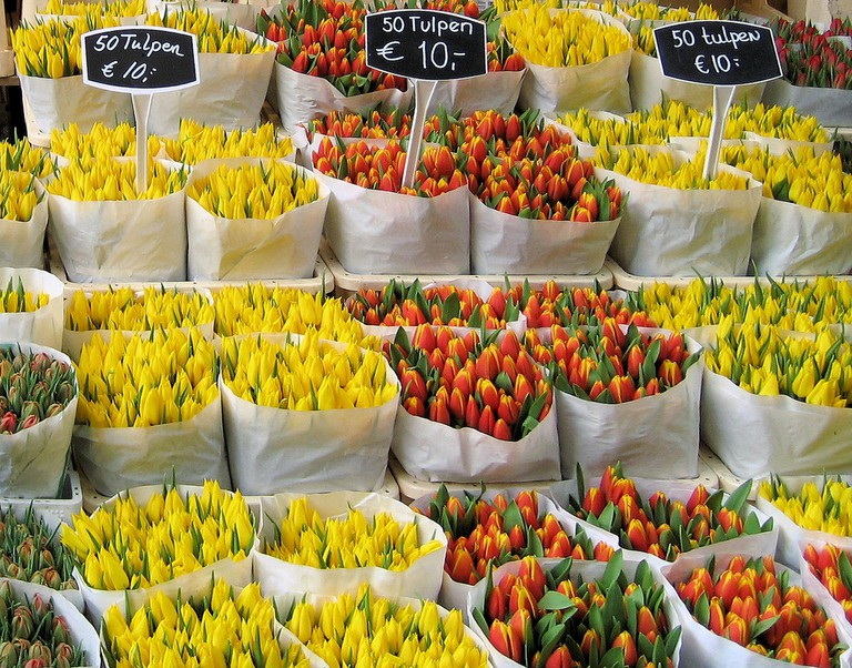 Tulips at Amsterdam's floating flower market