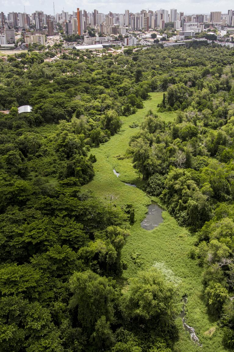 Eco Park in Fortaleza /