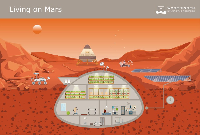 How Wamelink imagines a home on Mars