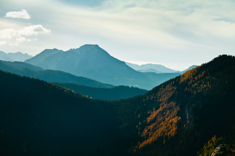 Green sunny landscape with trees in forest and mountains in Zakopane