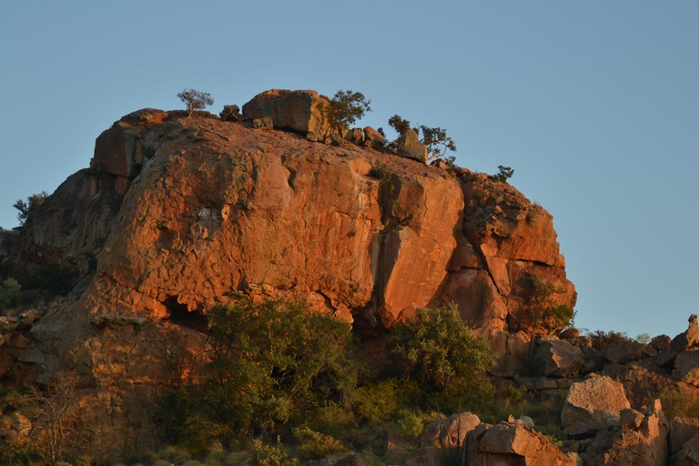 Mapungubwe provides a sanctuary to endangered mammals, such as the black and white rhino, wild dog and the African elephant