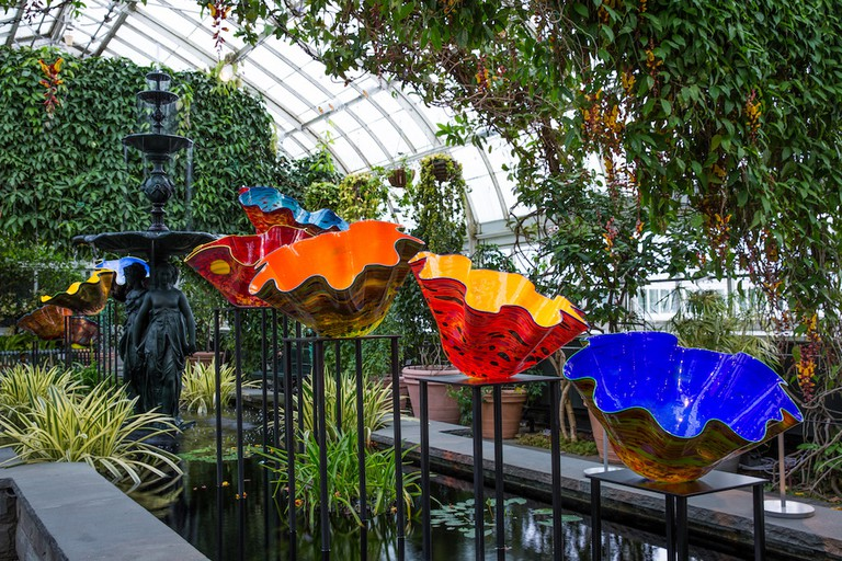 Dale Chihuly, Macchia Forest, 2017, The New York Botanical Garden