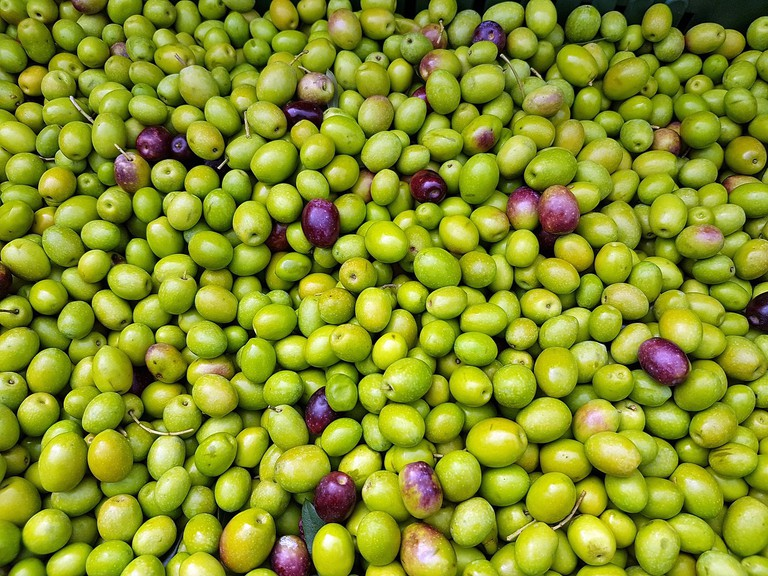 Green and unripe olives CC0 Pixabay
