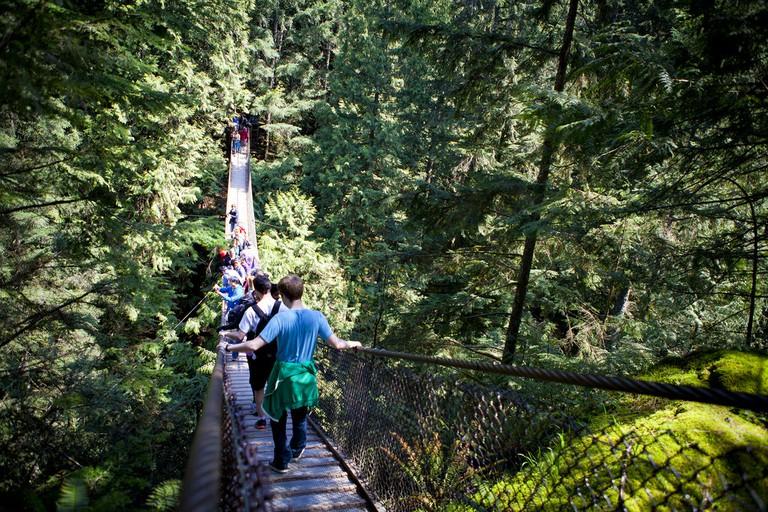 Lynn Canyon's Suspension Bridge