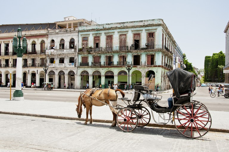 Horse and Carriage in Old Havana