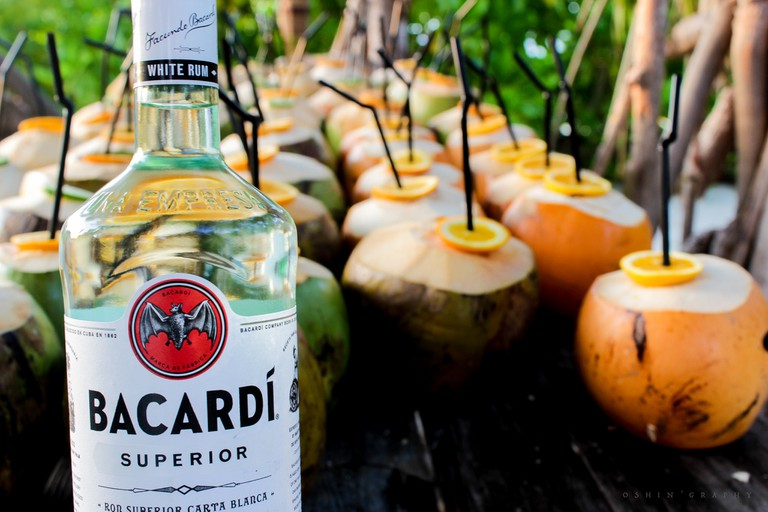 Coconuts and white Bacardi rum