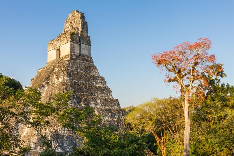 Temple in Tikal, Guatemala.