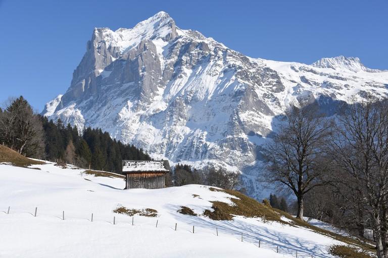 Wetterhorn in winter, Grindelwald, Switzerland.