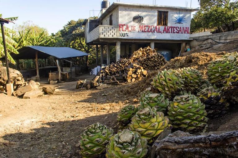 Mezcaleria in Oaxaca | © Cantimplora Travel