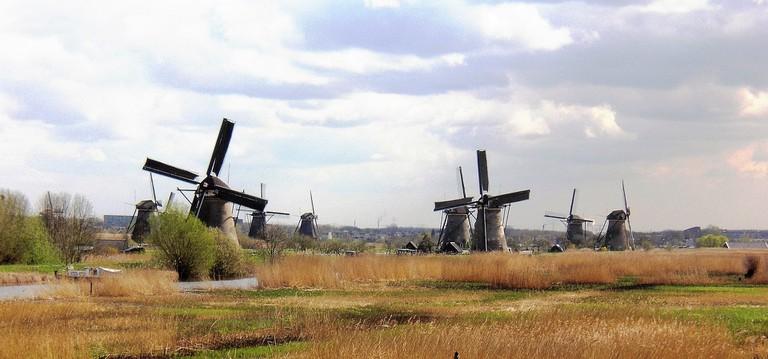 The mills at Kinderdijk