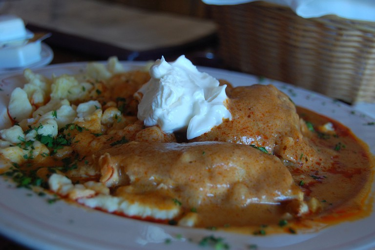 Chicken paprikash traditional Hungarian dish