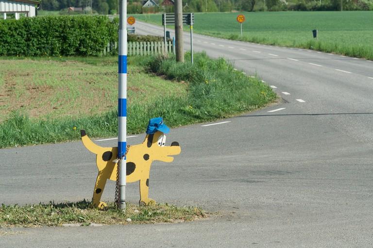 Unique Swedish experiences