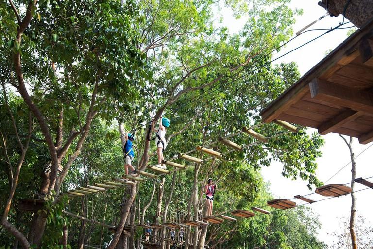 Singapore Bedok Reservoir Forest Adventure