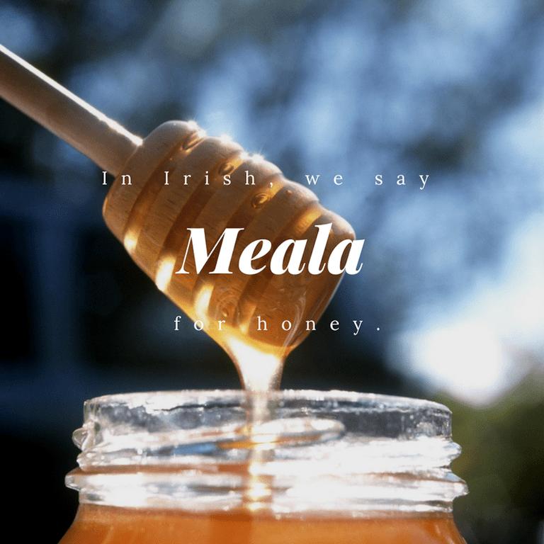 Meala - Honey