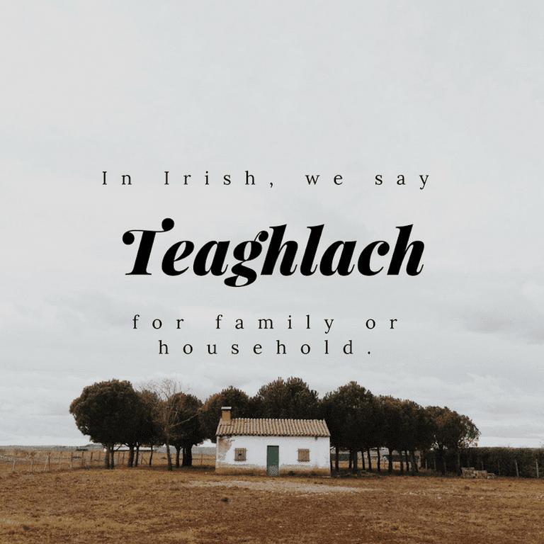 Teaghlach - Household or Family