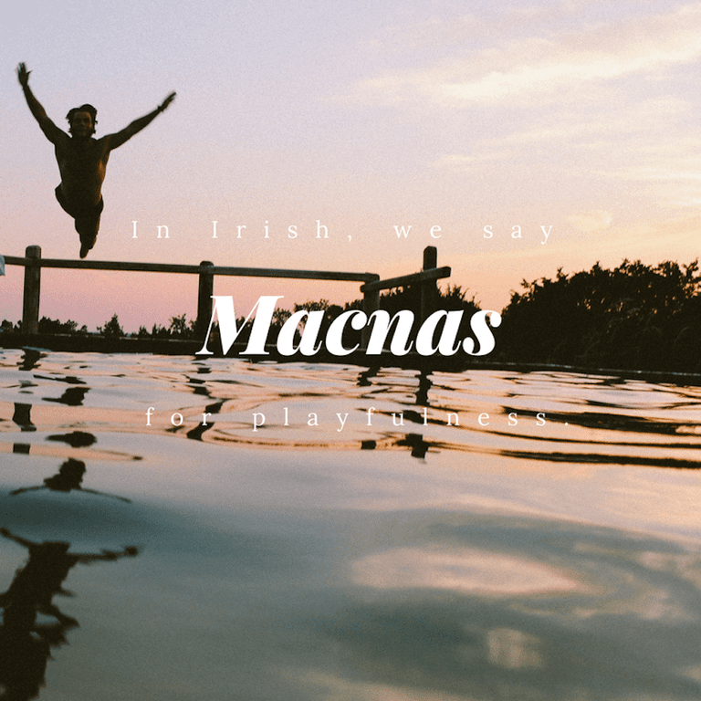 Macnas - Playfulness