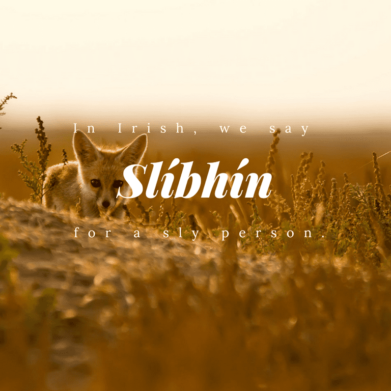 Slíbhín – Sly person