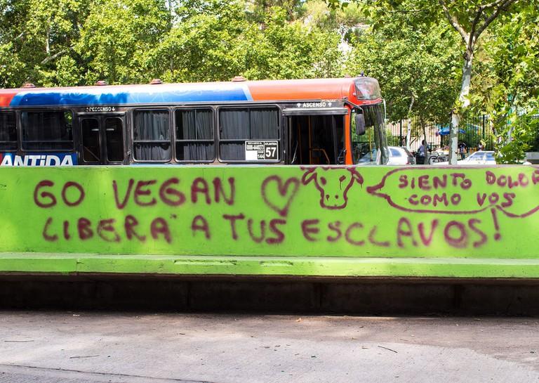 Pro-vegan graffiti in Buenos Aires