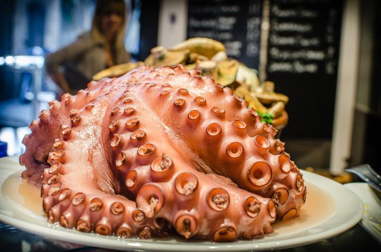 Octopus © Michele Ursino