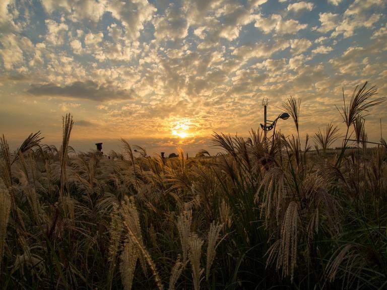 The sun sets over Haneul Park
