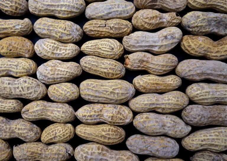 Peanut allergies can be extremely serious
