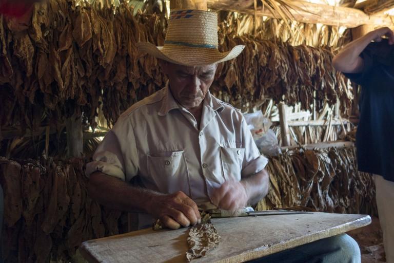 Cigar roller, Cuba