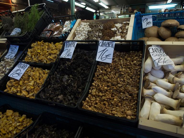 Mushrooms © Ajay Suresh