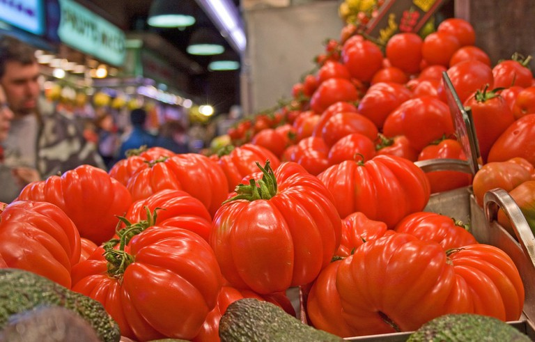 Tomatoes © Andrew E. Larsen
