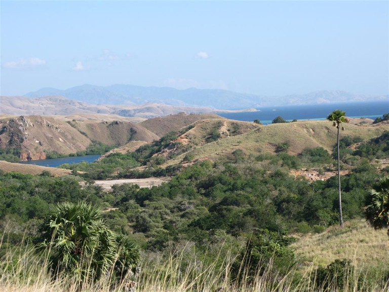 The view at Komodo National Park, Indonesia