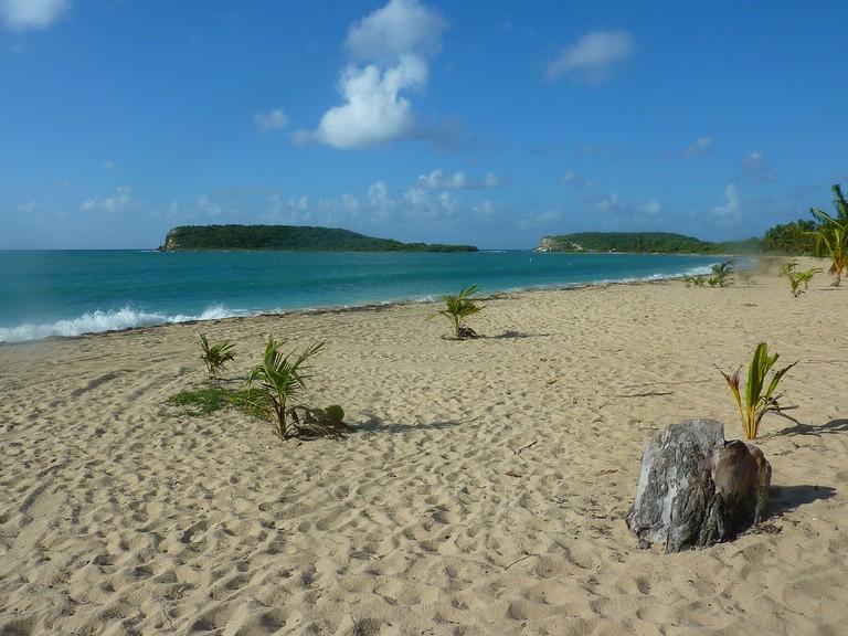 A beach in Culebra, Puerto Rico