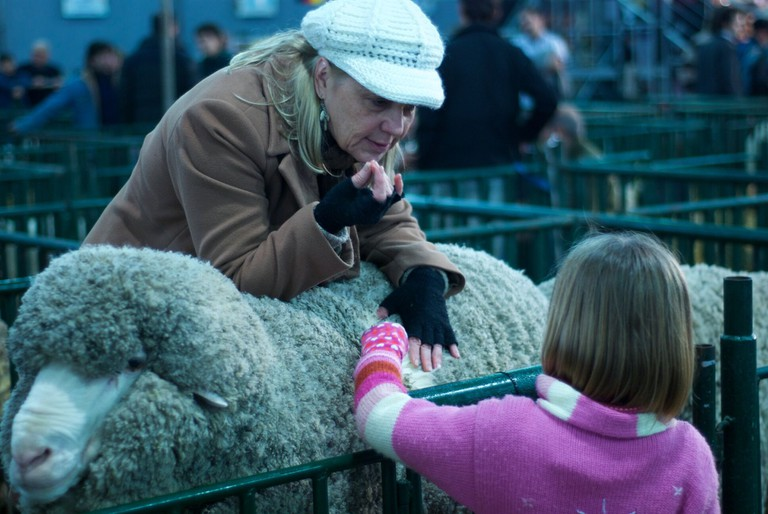 An exchange between old and young at the 2011 La Rural Agricultural Fair