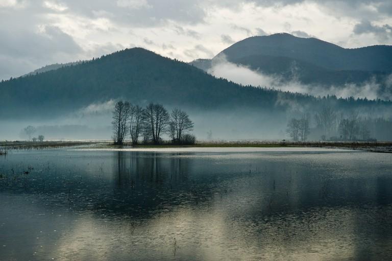 Ljubljana Marsh│